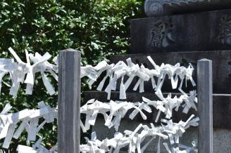 Fushimi-Inari (30)